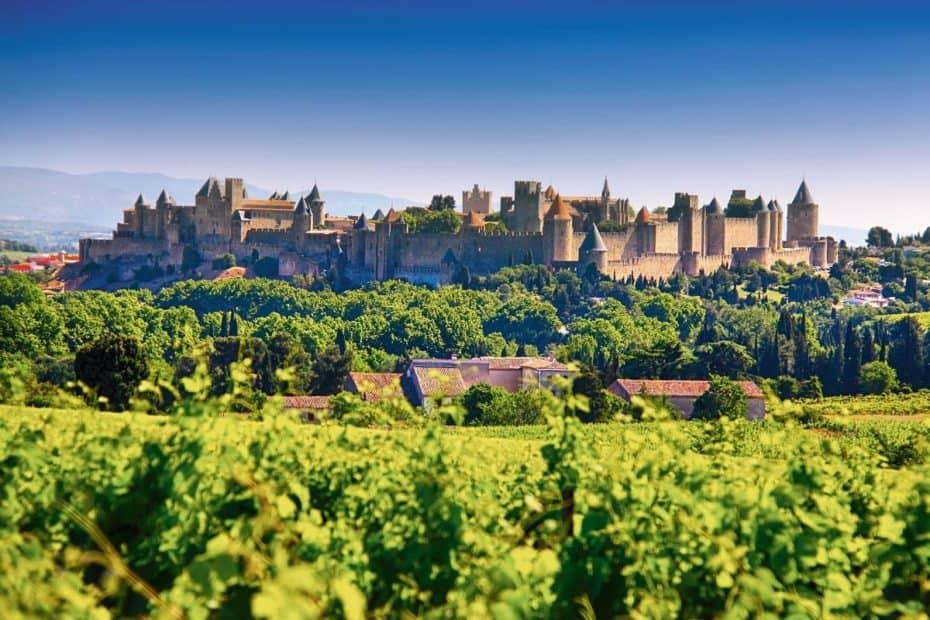 Cité de Carcassonne et vignobles