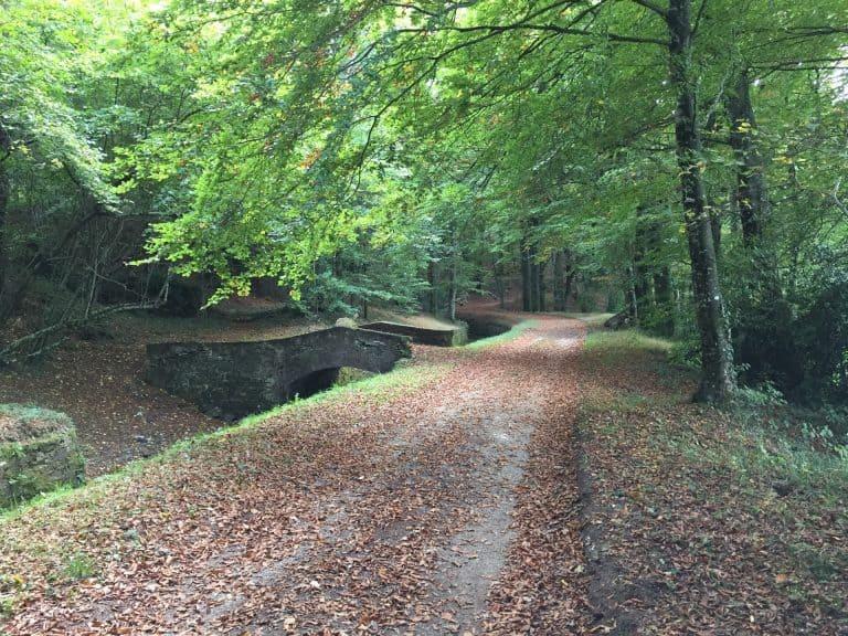 La Rigole en automne (1)