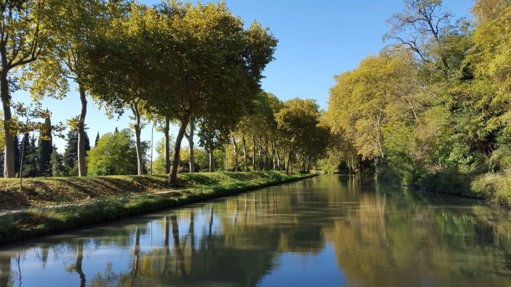 Bord de rivière, canal du midi